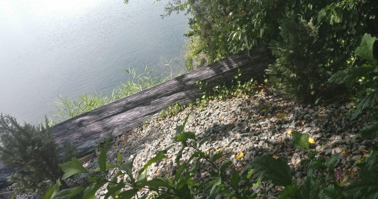 Die Lage der Villa Lacus am See ist nur schwer zu toppen. Möchte man dem Auge etwas Natur und Entspannung gönnen, empfängt uns die Natur hier mit lebendigem Grün.